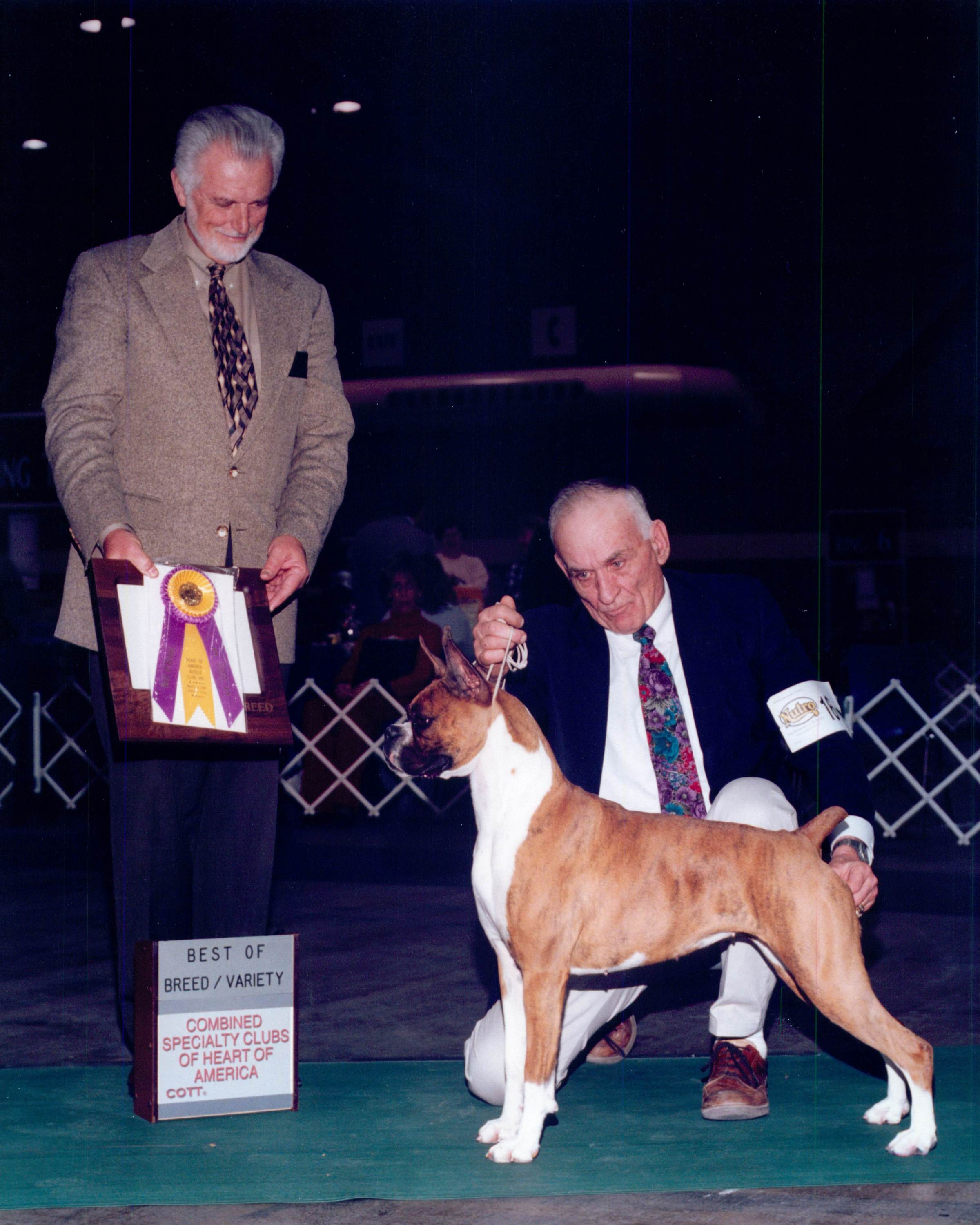 Best of Breed @ 2001 Specialty Show #1