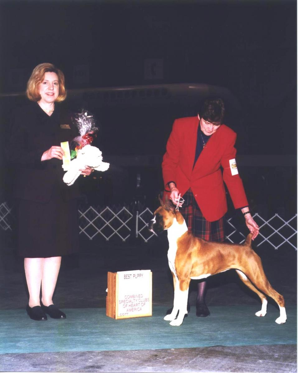 Best Puppy @ 2001 Specialty Show #1