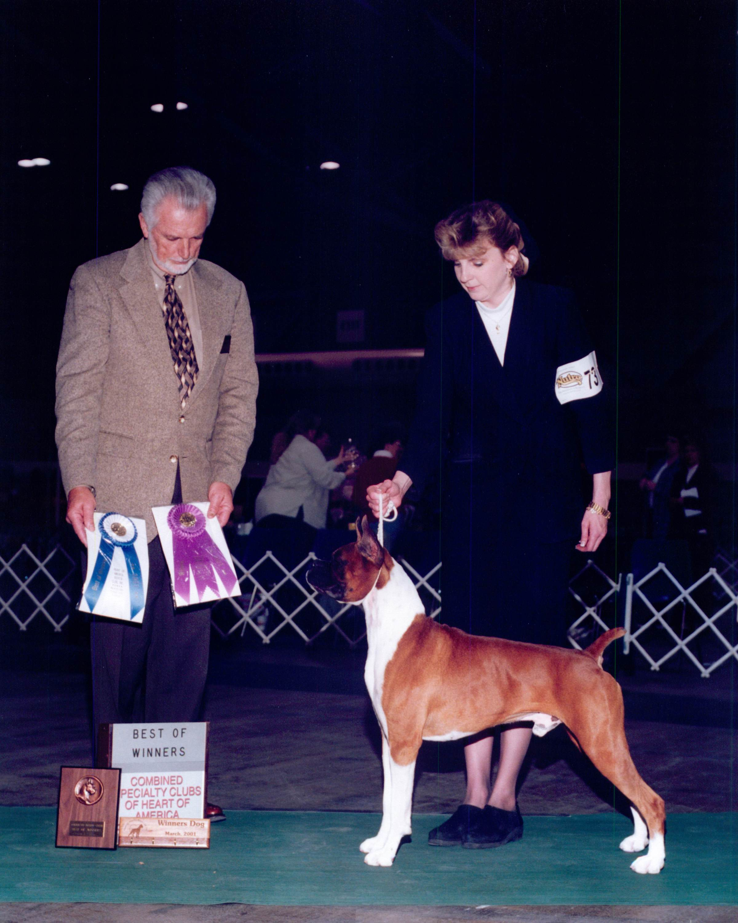 Best of Winners & Winners Dog @ 2001 Specialty Show #1