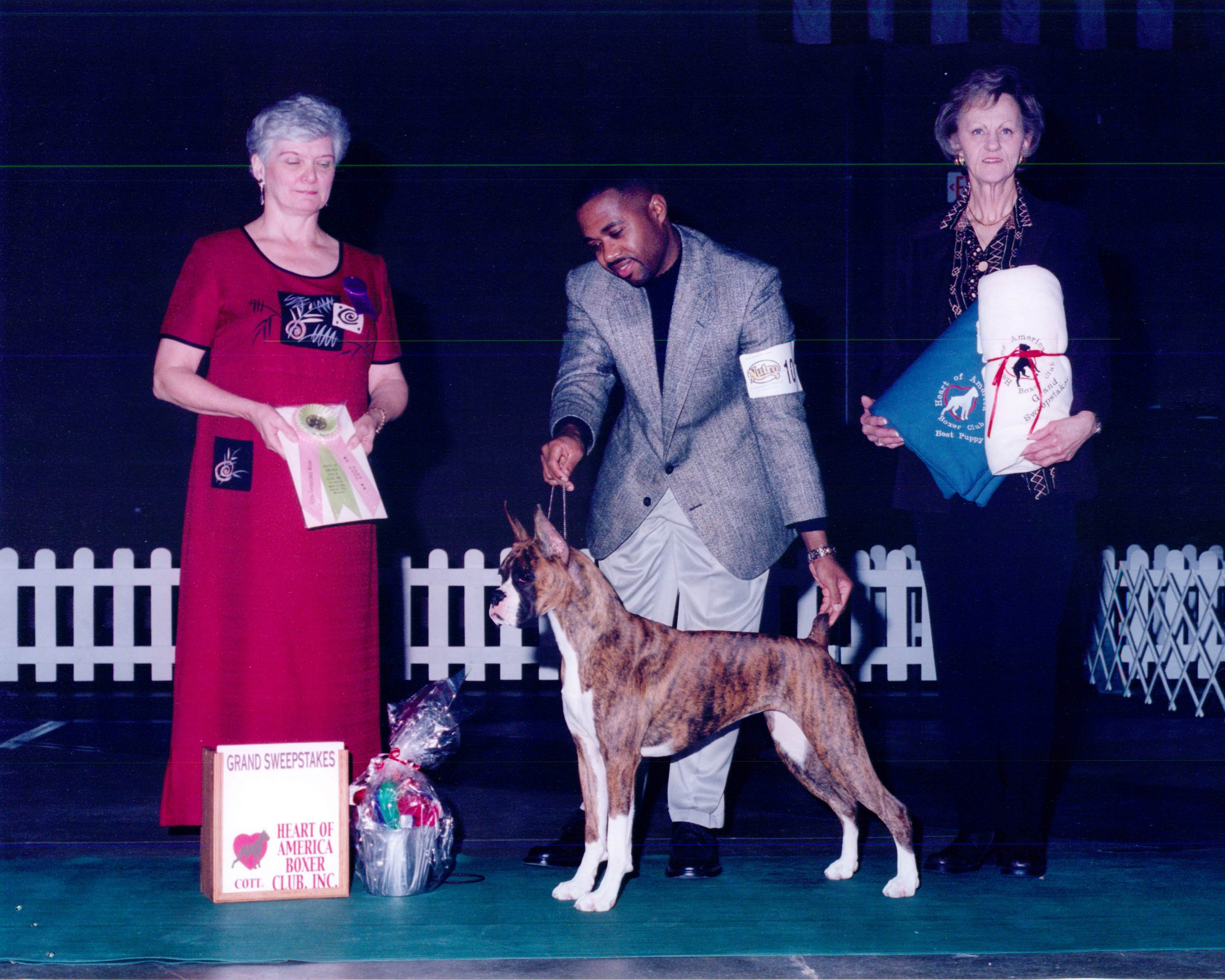 Grand Sweepstakes, Best Puppy @ 2002 Specialty Show #1