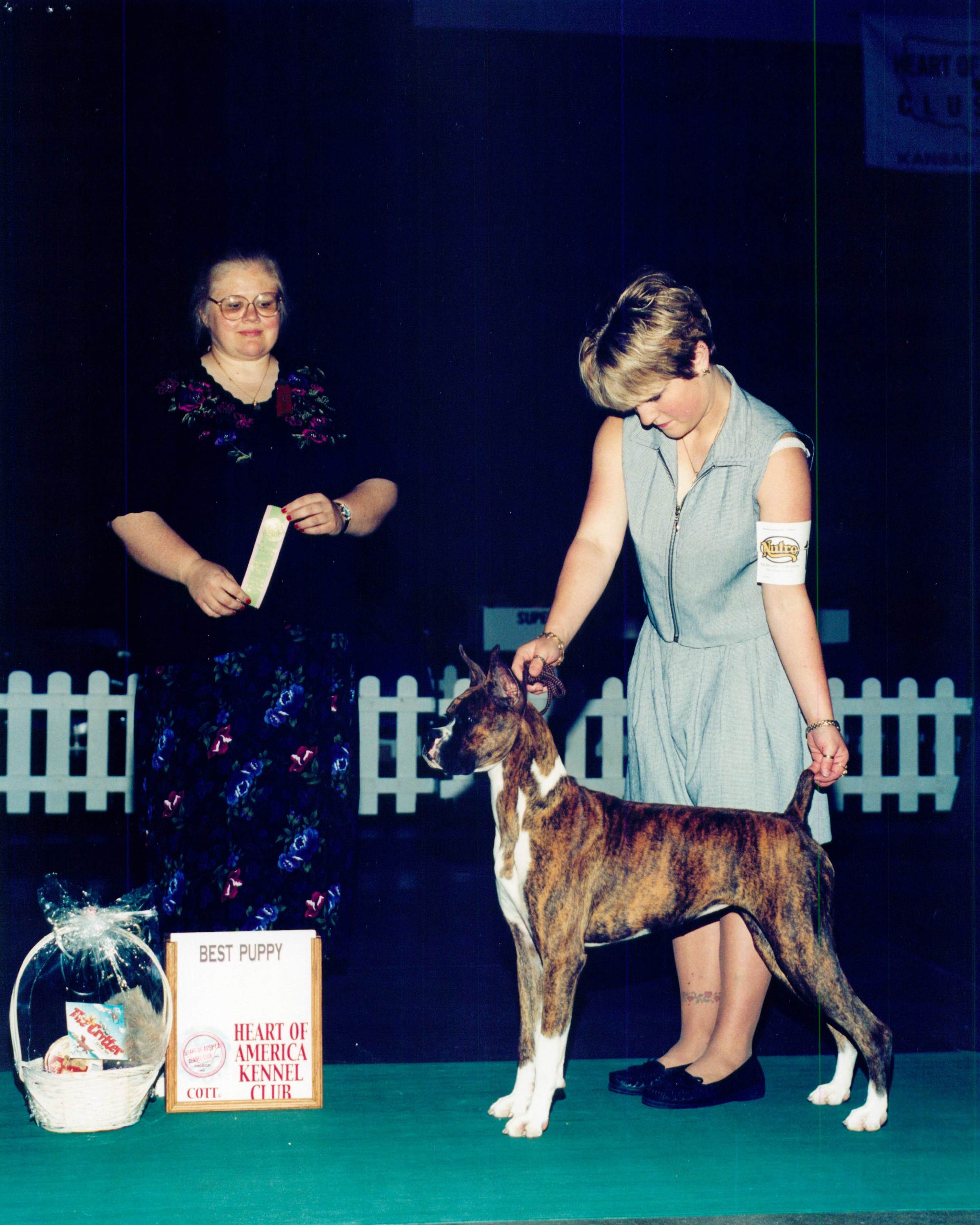 Best Puppy @ 2002 Specialty Show #2