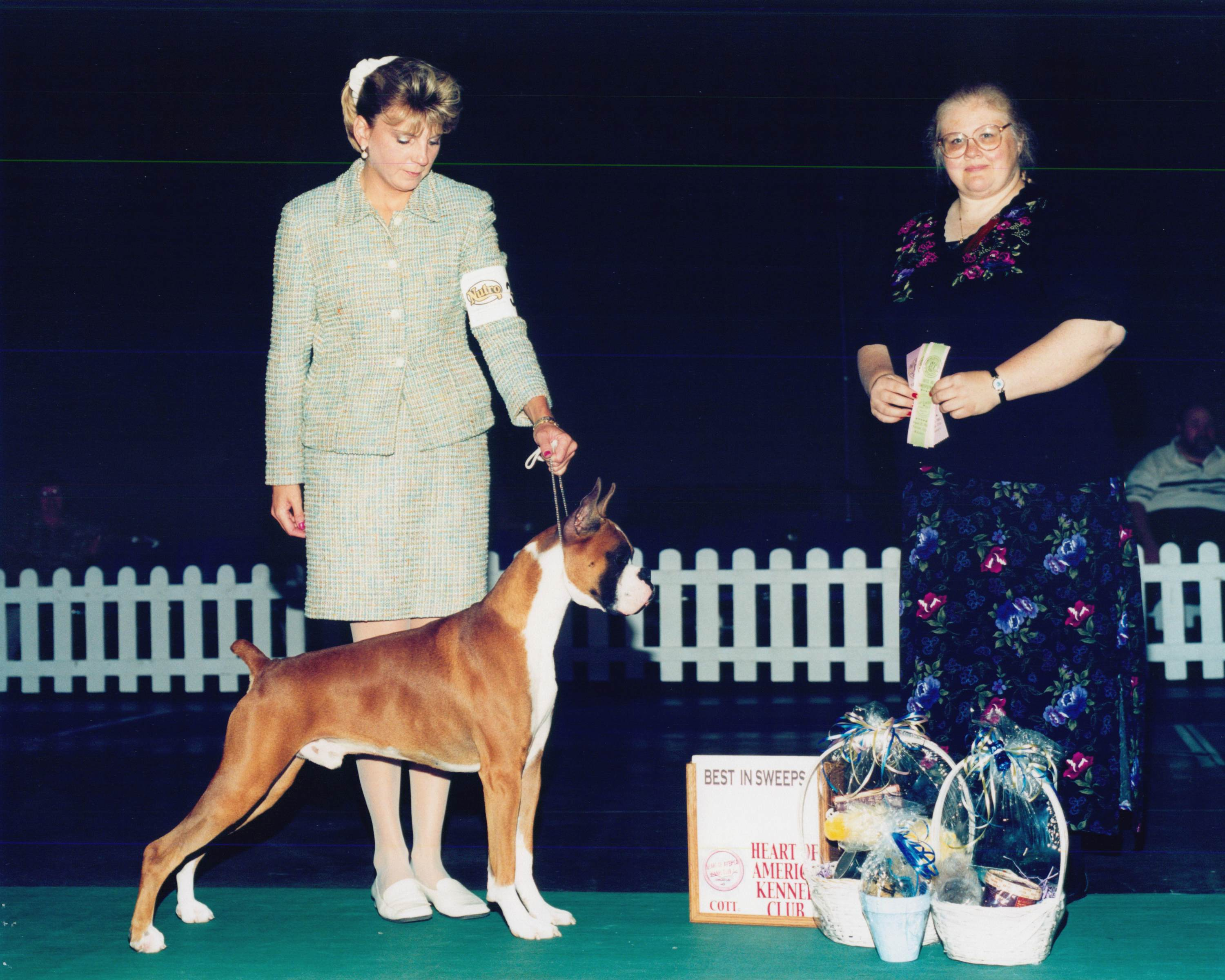 Grand Sweepstakes, Best Junior @ 2002 Specialty Show #2