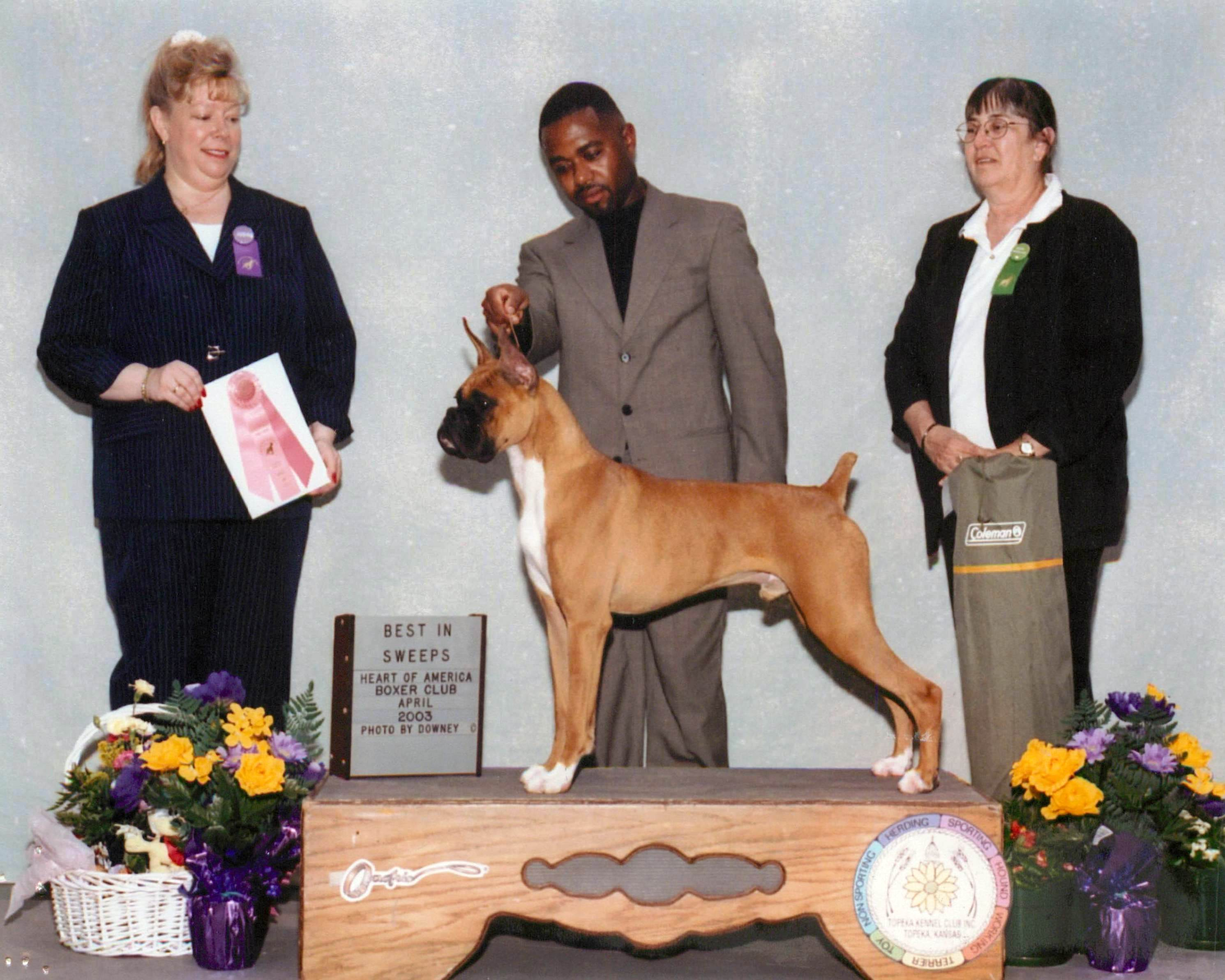 Grand Sweepstakes, Best Puppy @ 2003 Specialty Show #1