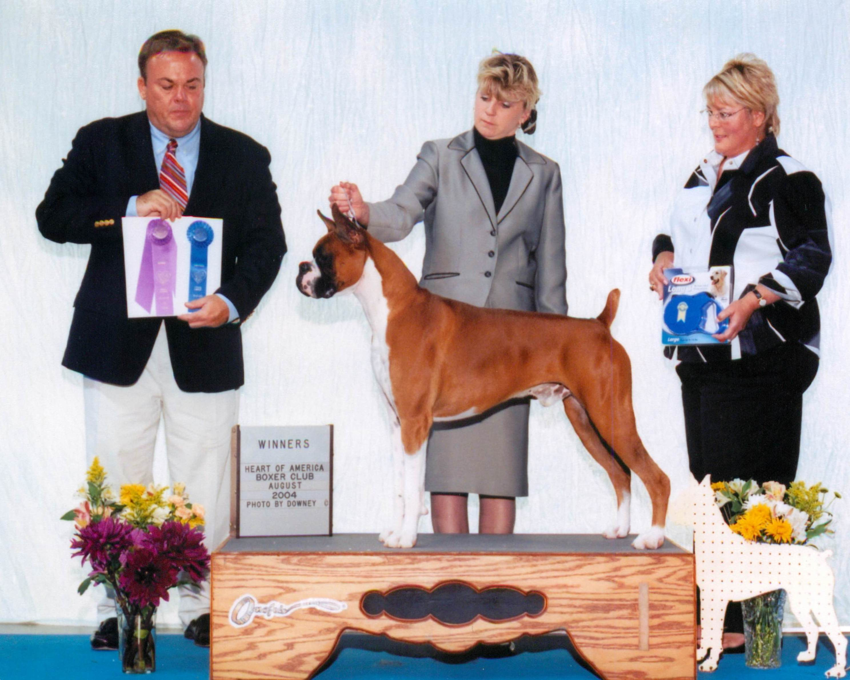 Winners Dog @ 2004 Specialty Show #1