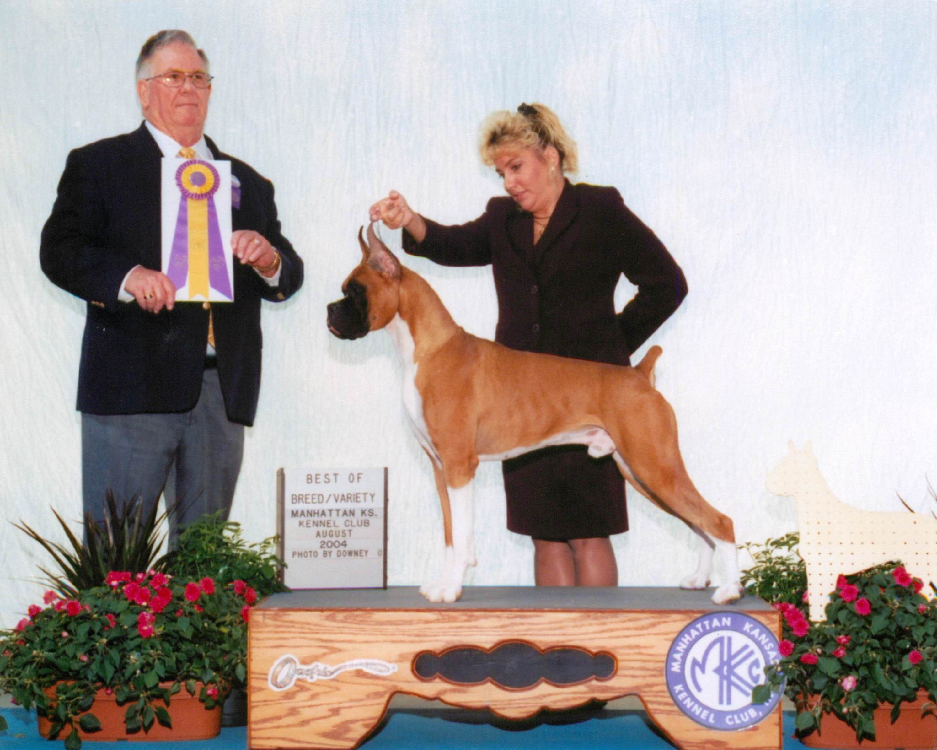 Best of Breed @ 2004 Specialty Show #2