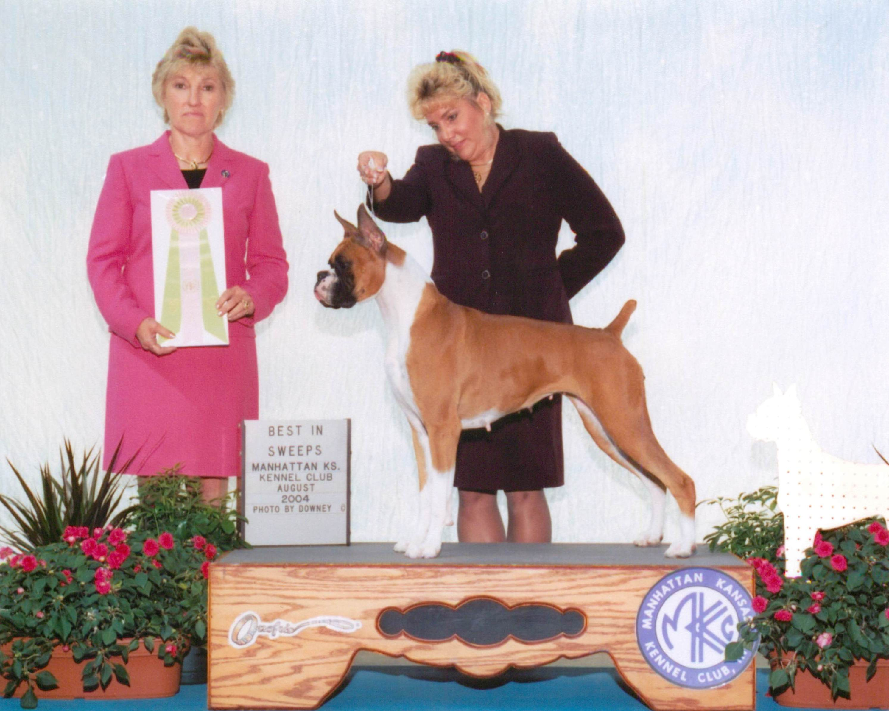 Grand Sweepstakes & Best Junior @ 2004 Specialty Show #2
