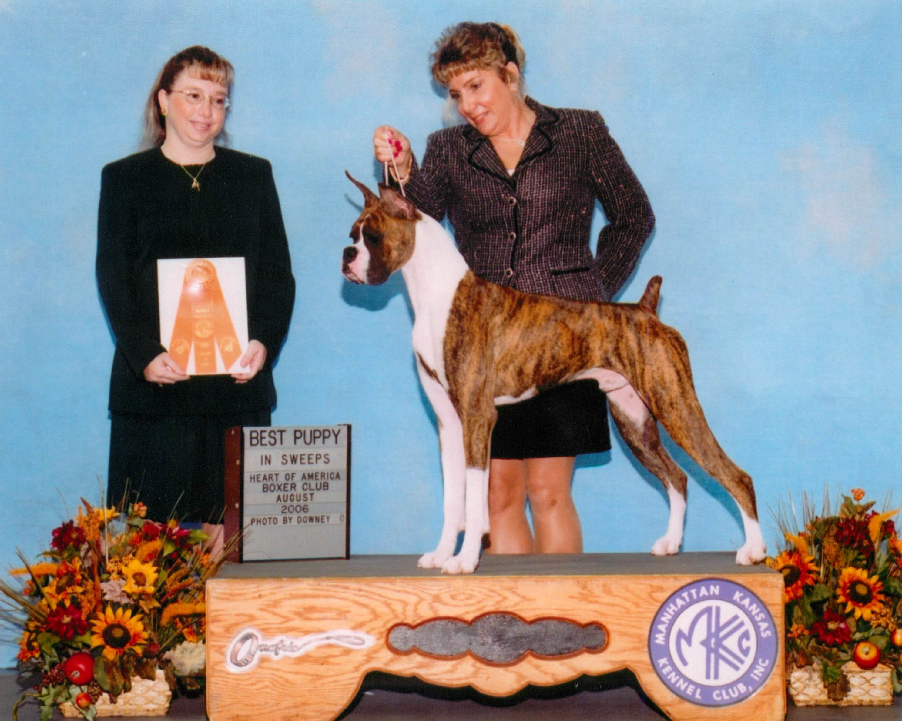 Best Puppy @ 2006 Specialty Show #2