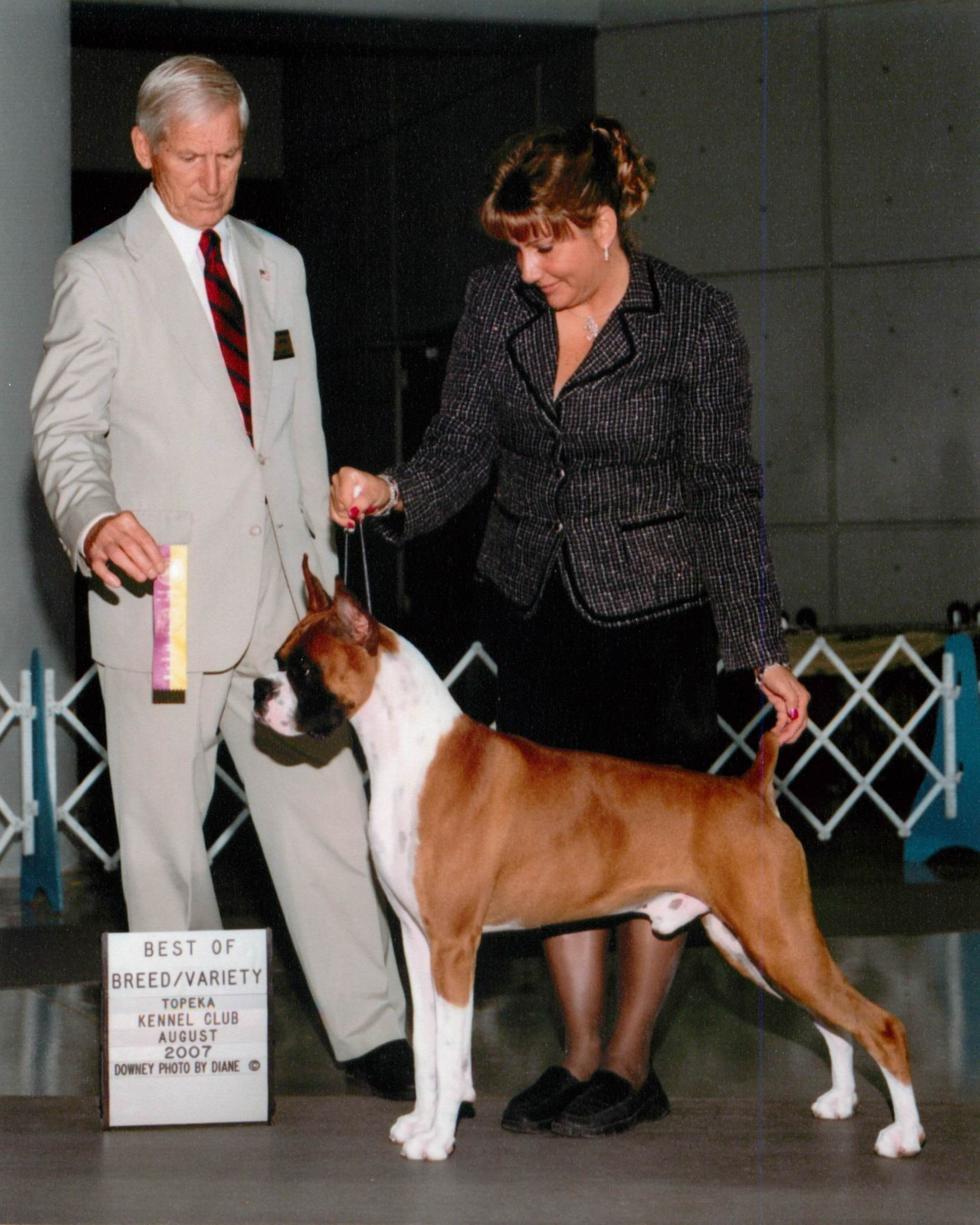 Best of Breed @ 2007 Specialty Show #2