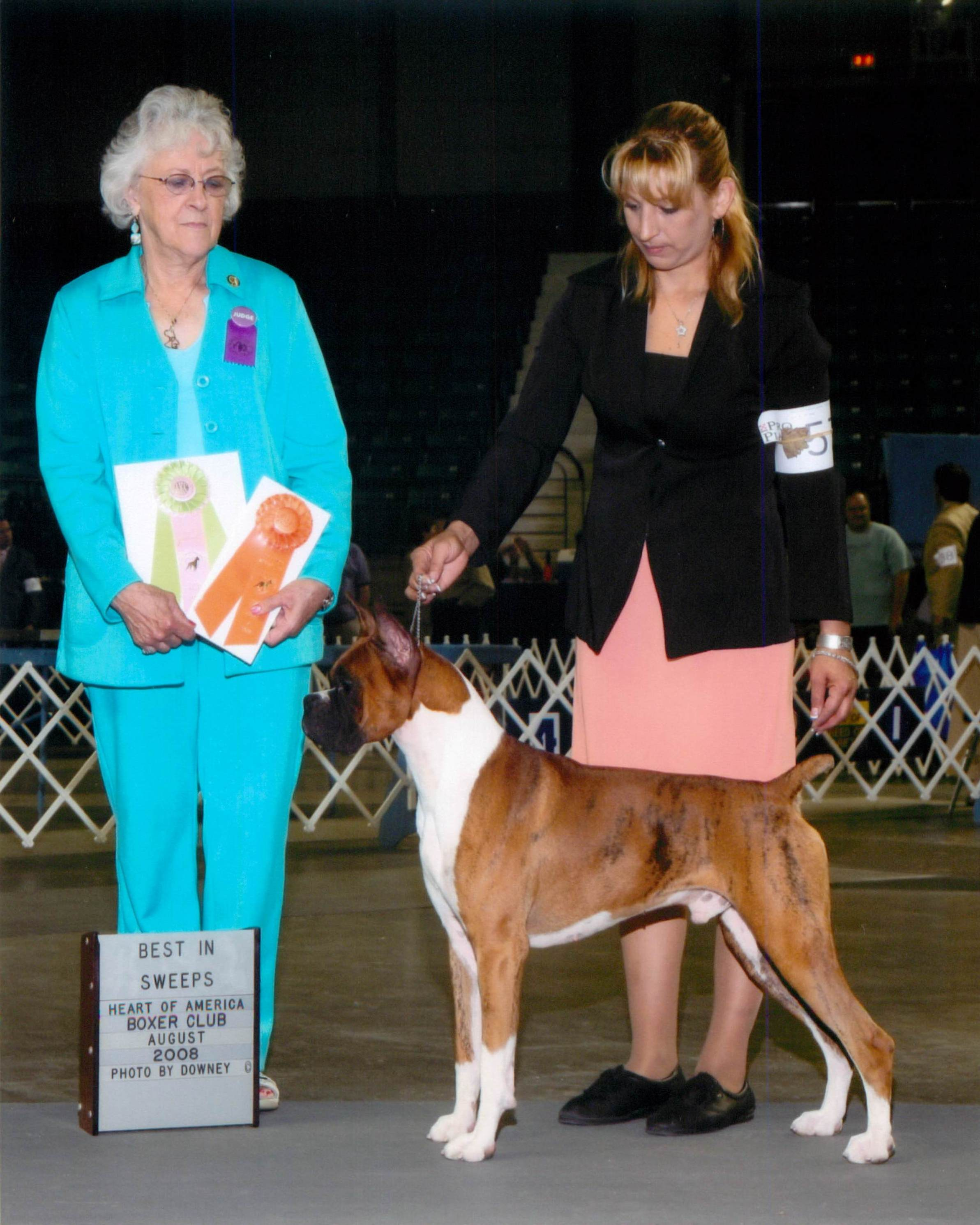 Grand Sweepstakes, Best Junior @ 2008 Specialty Show #2