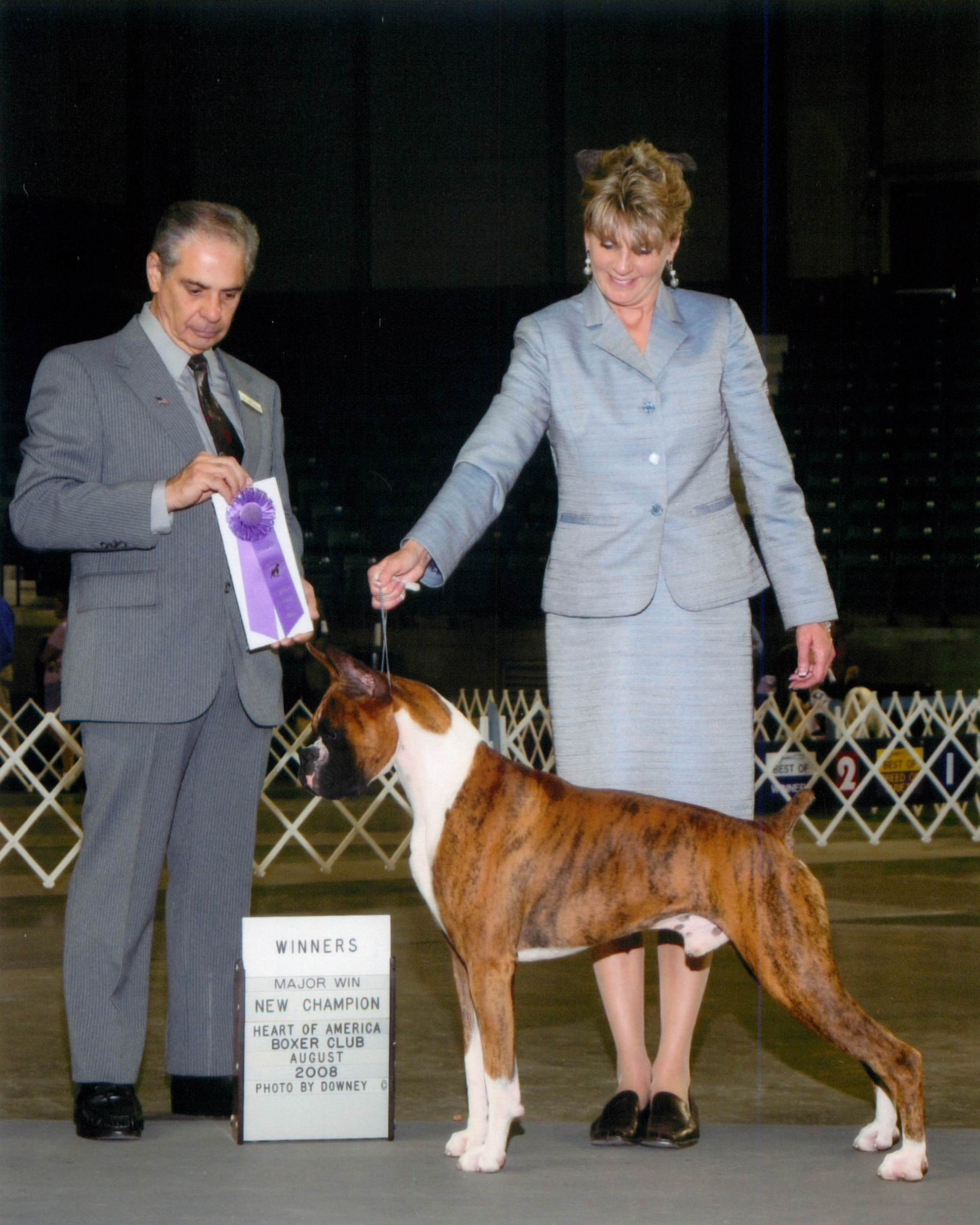 Winners Dog @ 2008 Specialty Show #2