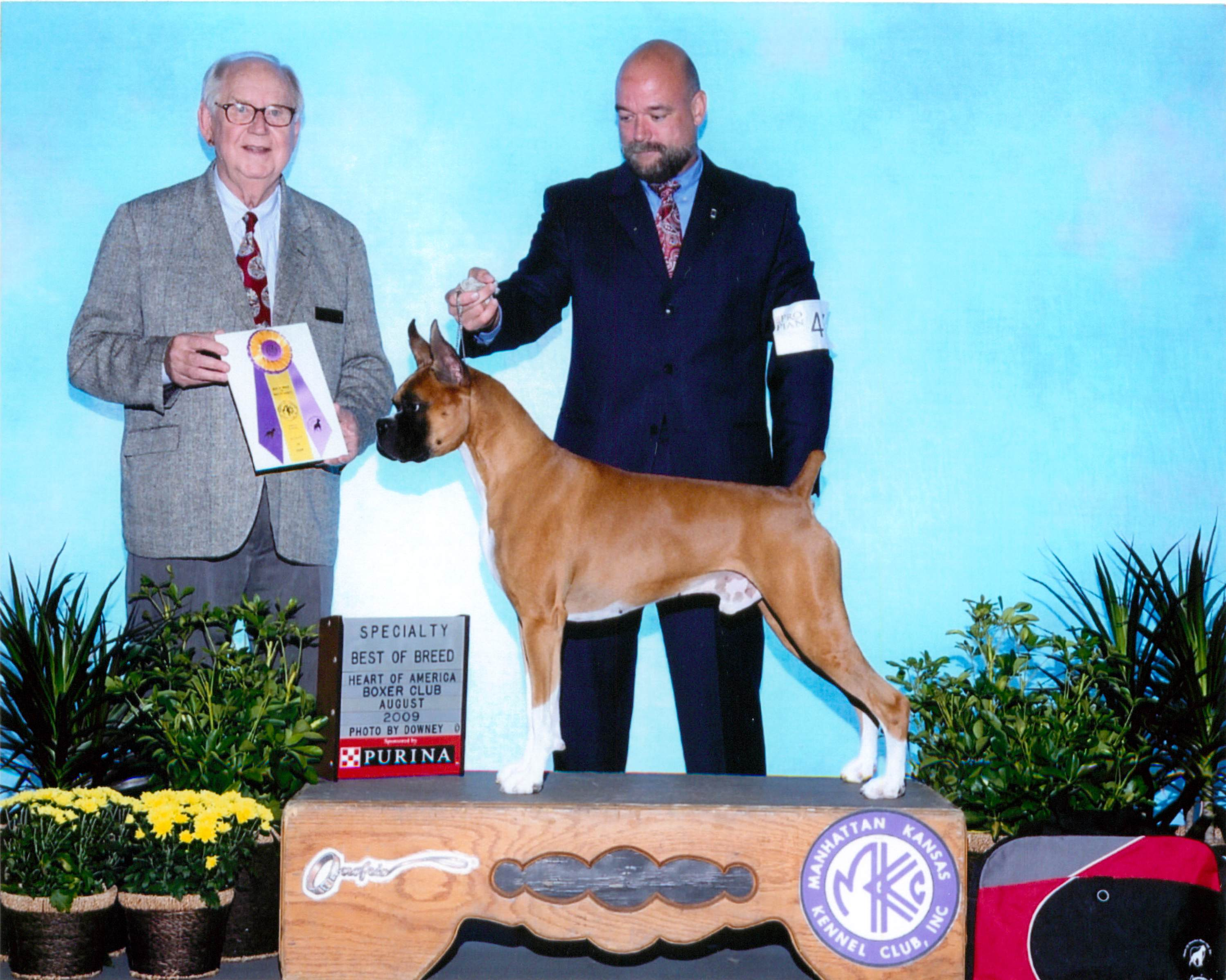 Best of Breed @ 2009 Specialty Show #1