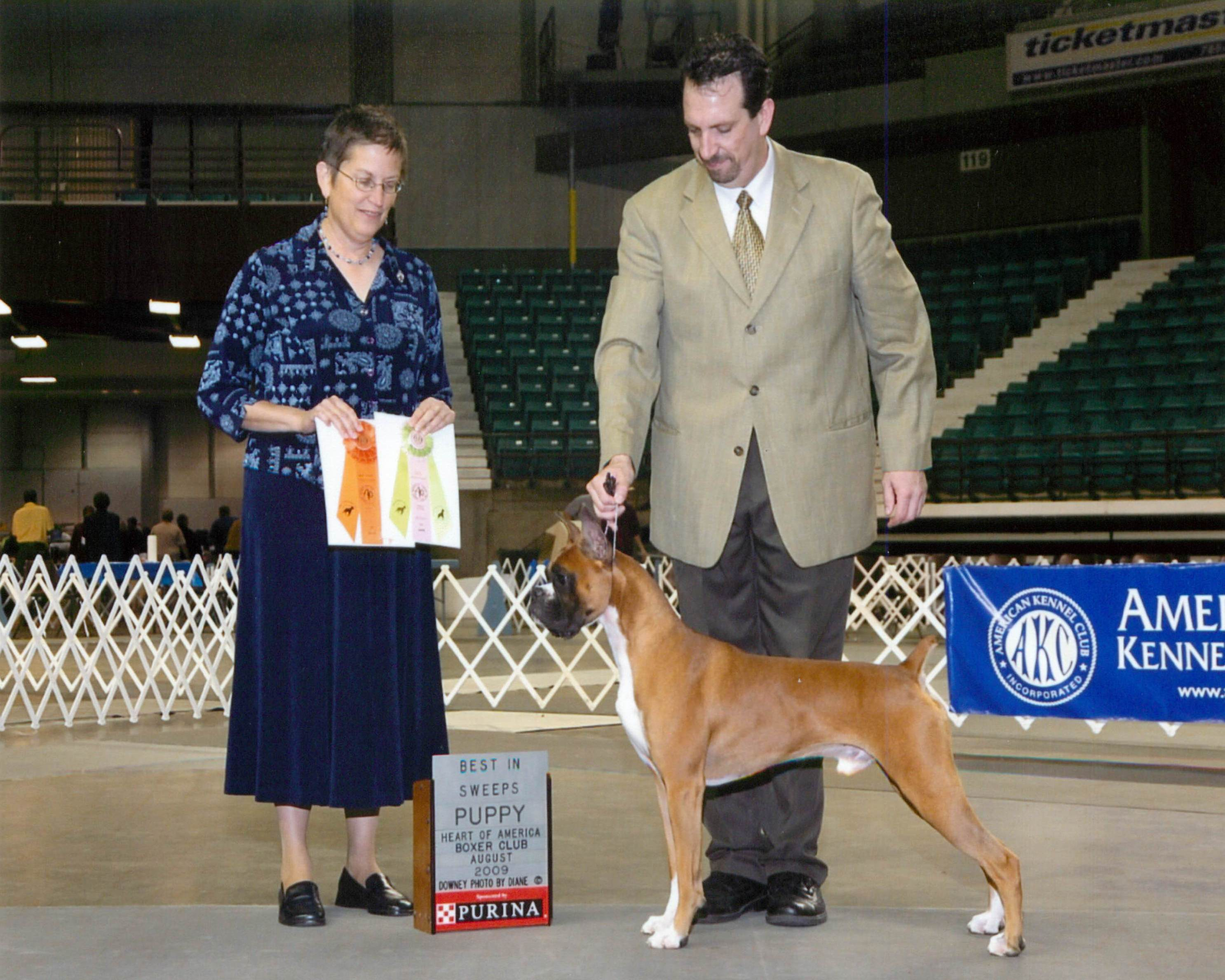 Grand Sweepstakes, Best Puppy @ 2009 Specialty Show #1