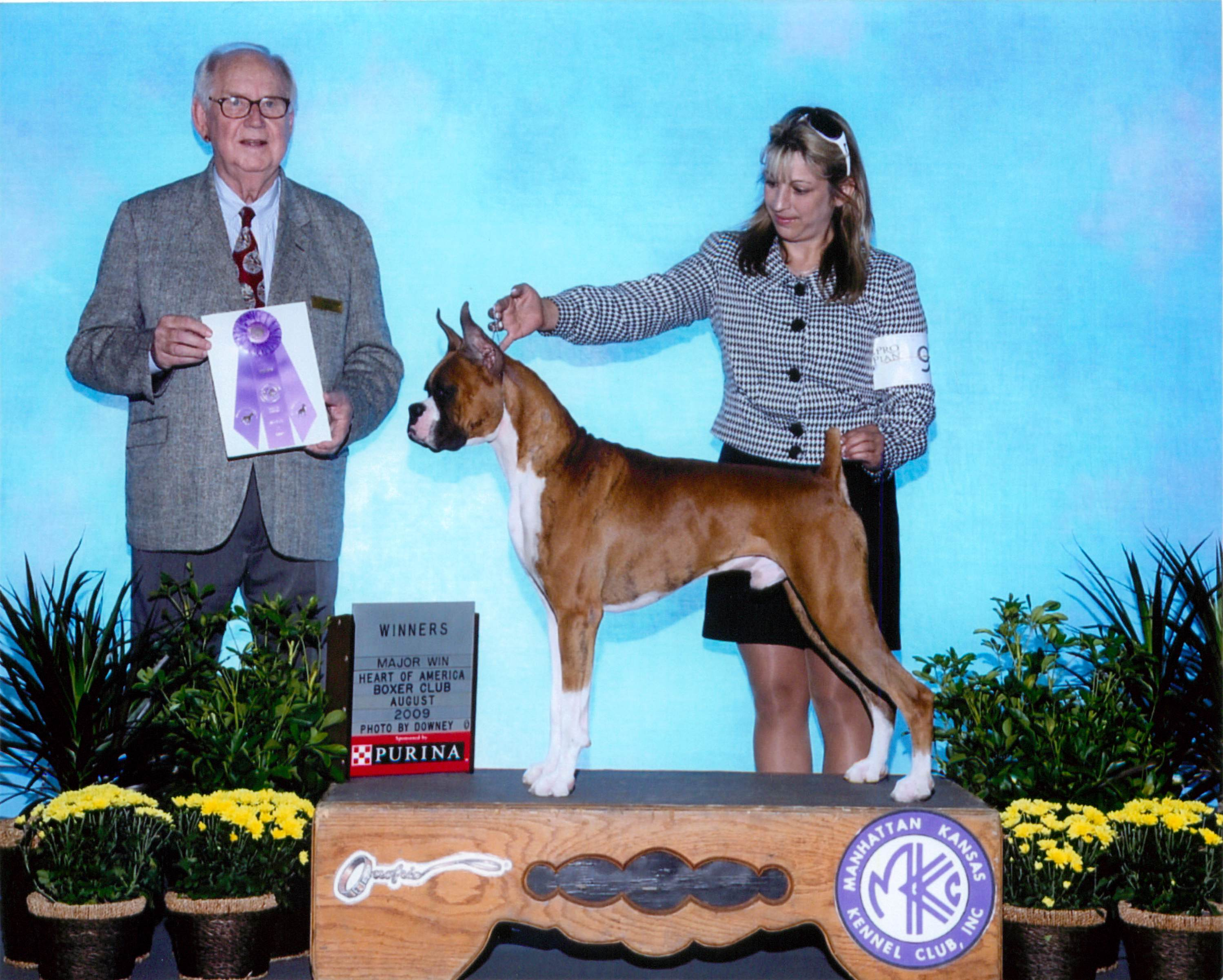 Winners Dog @ 2009 Specialty Show