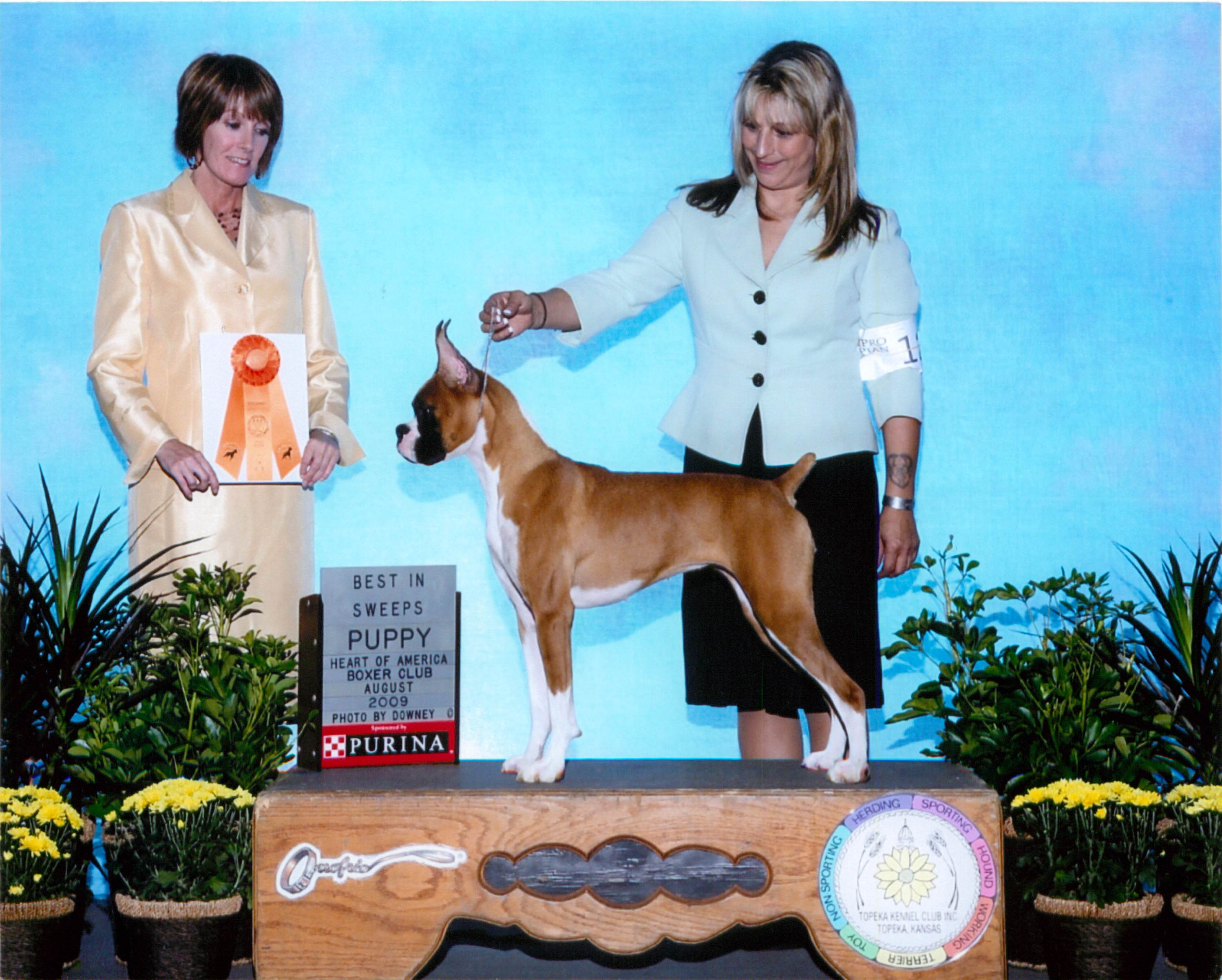 Best Puppy @ 2009 Specialty Show #2