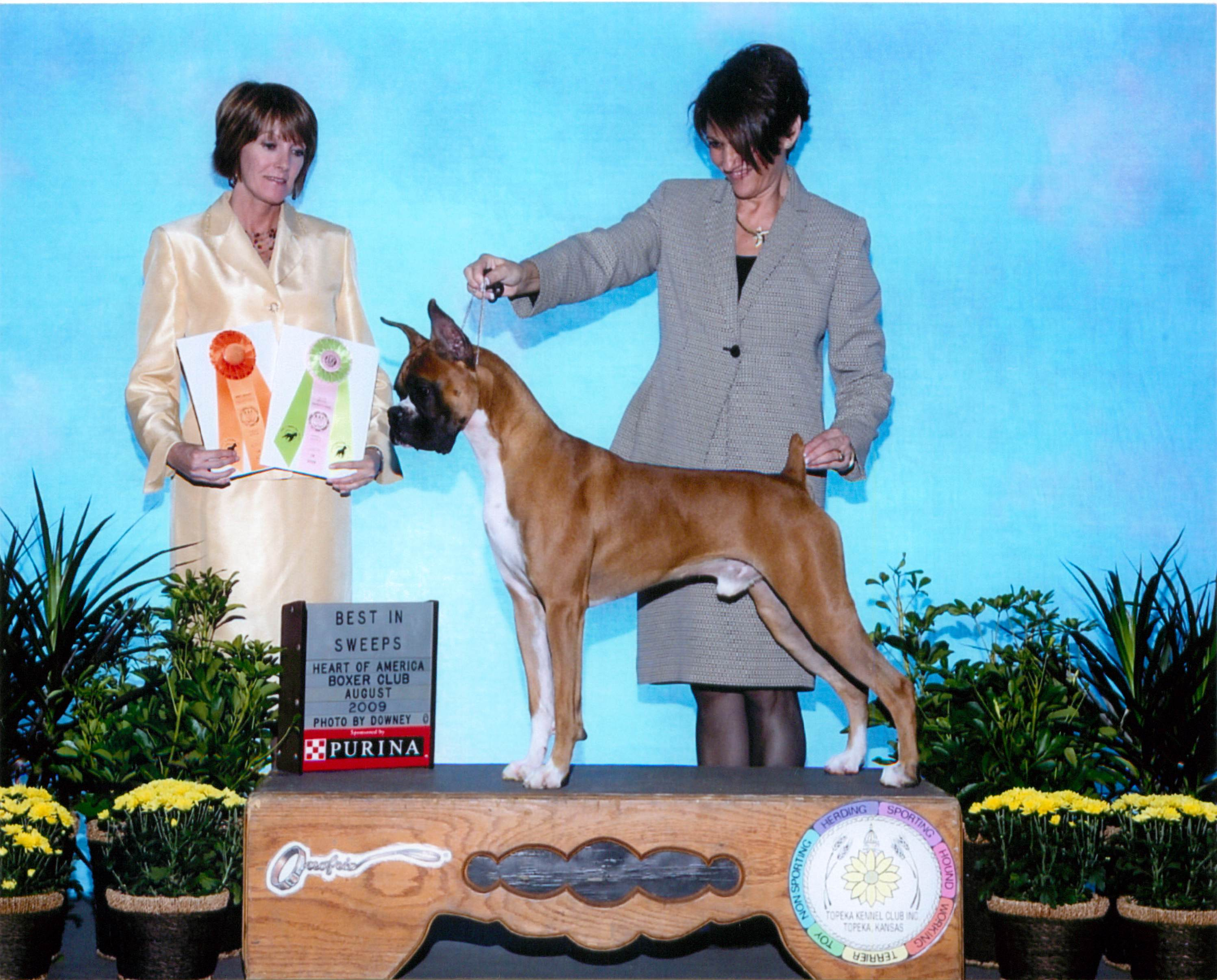 Grand Sweepstakes, Best Junior @ 2009 Specialty Show #2