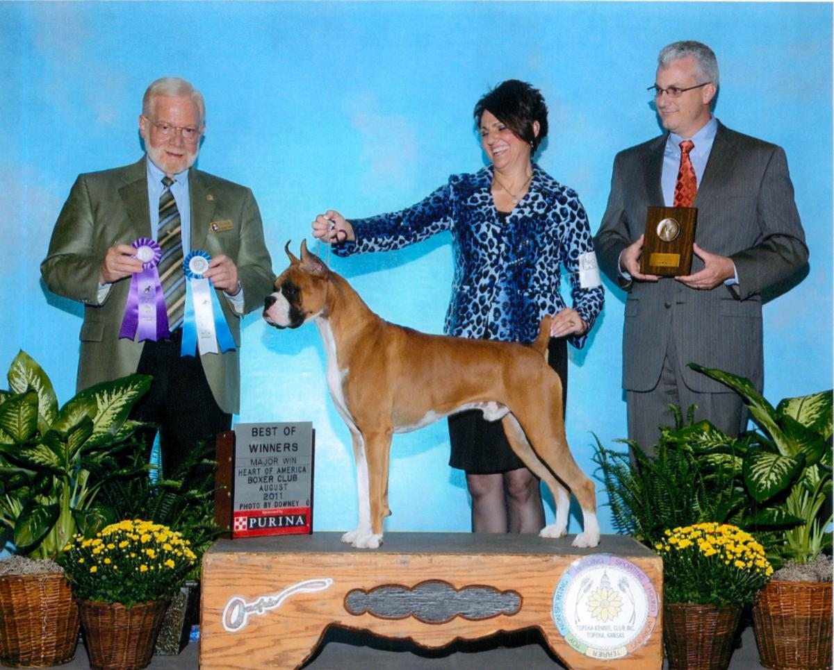 Best of Winners & Winners Dog @ 2011 Specialty Show #2