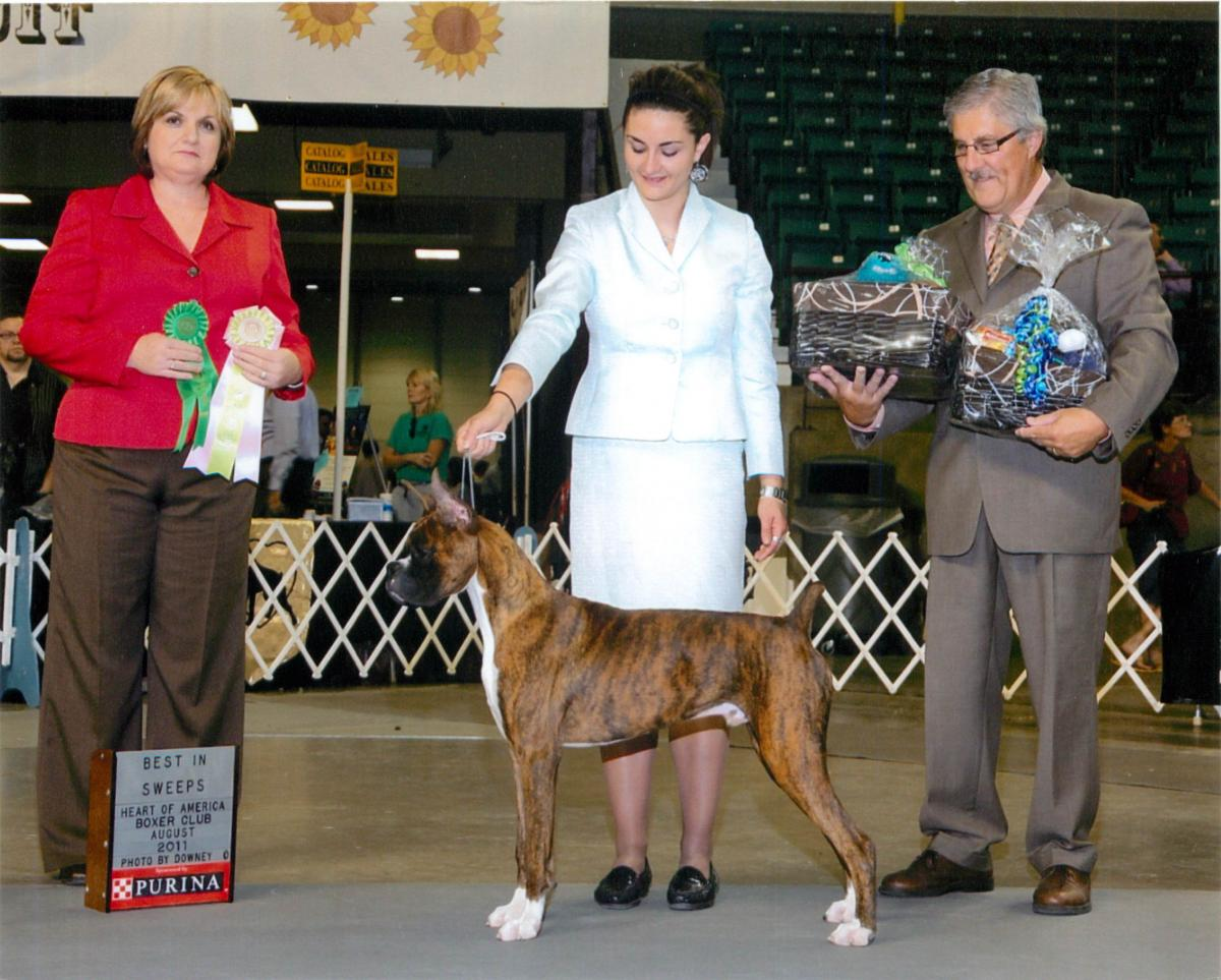 Grand Sweepstakes, Best Puppy @ 2011 Specialty Show #2