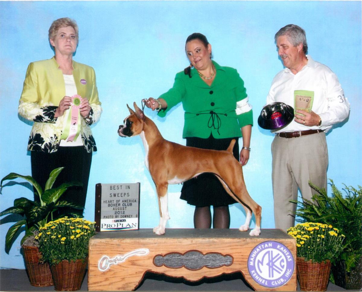 Grand Sweeps & Best Junior @ 2012 Specialty Show #2