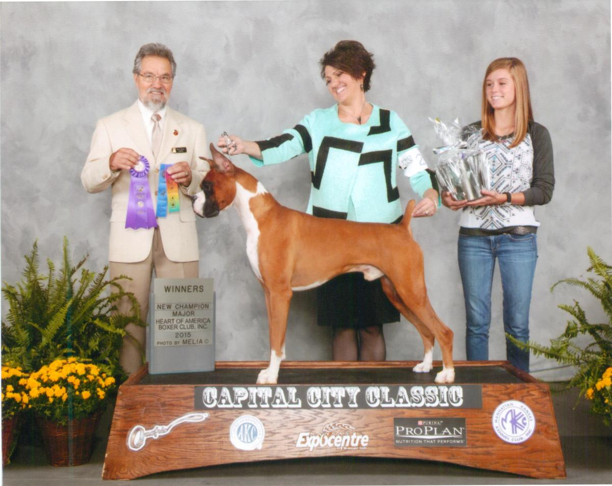 Winners Dog @ 2014 Specialty Show #1